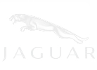 We service Jaguar